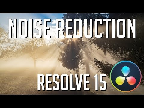 How to Add Noise Reduction while Editing or Recording Voice Overs | DaVinci Resolve 15 Tutorial