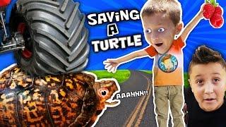 WE SAVED AN INJURED TURTLE!! (FUNnel Vision Pet Smart Habitat Vlog)