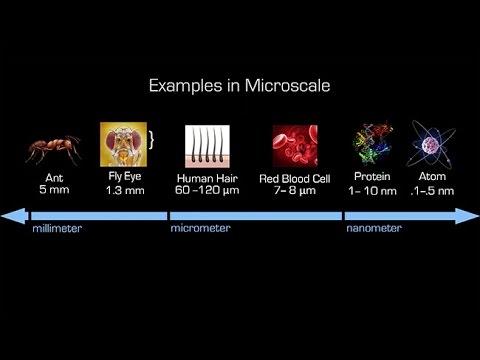 Building Biologically Inspired Nano-Bots