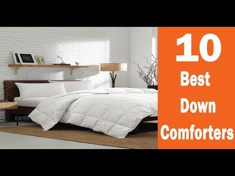 Top 10 Best down comforter