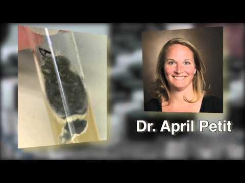 Meningitis mystery solved at Vanderbilt Pathology Lab