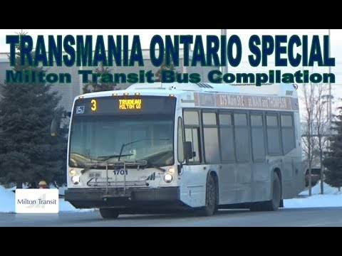 TO SPECIAL - Milton Transit Bus Compilation