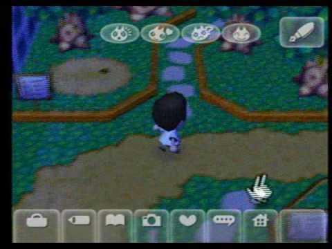 Animal Crossing: City Folk -How To Catch A Tarantula