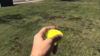 ZipChip First Throw