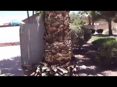 Townhome for Rent in Henderson NV 3BR/2.5BA by Henderson Property Management
