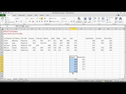 Excel 2010 Basics - Managing and Moving Cells.mov