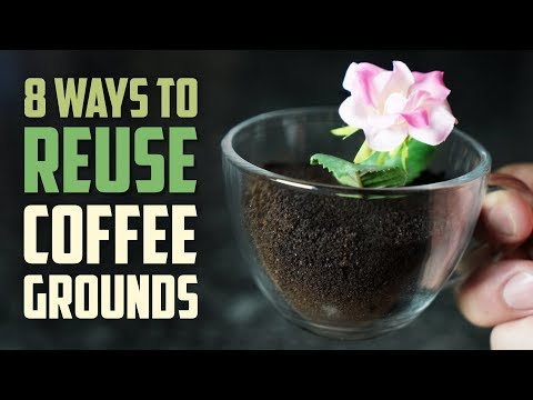 8 Smart Ways to Reuse Coffee Grounds