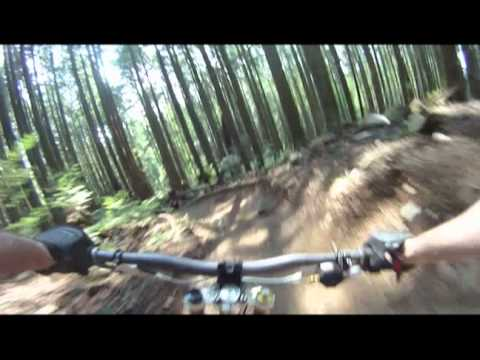 Two laps of Bobsled on Fromme