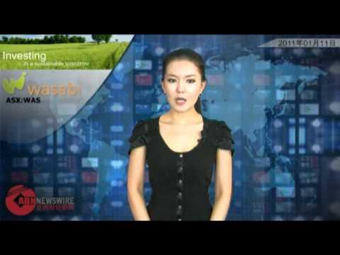 Eldorado Gold (ASX:EAU): ABN Newswire Australian Video January 11, 2011