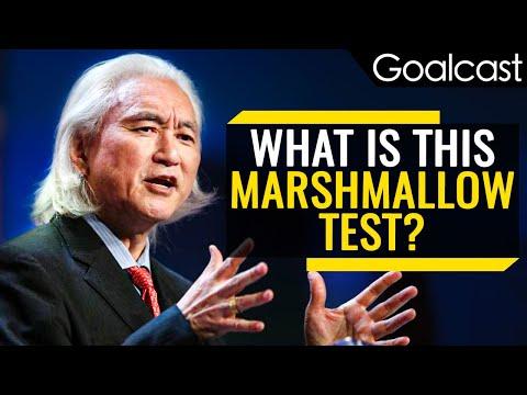 How Marshmallows Predict Your Success   Michio Kaku   Goalcast