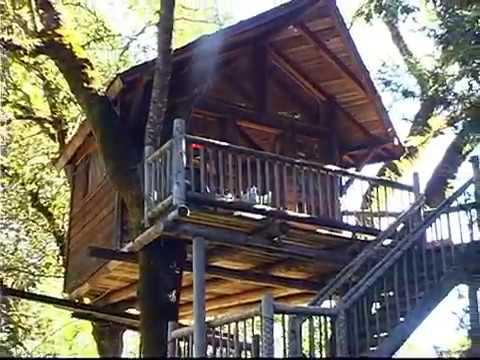 Xxx Mp4 Treesort July 4th 2010 Histree Falls 3gp Sex