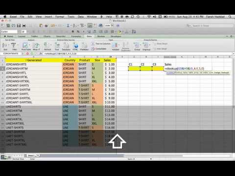 12- USING EXCEL TO SEARCH WITH MULTIPLE CRITERIA - EXAMPLE