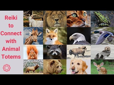Reiki to Connect with Animal Totems