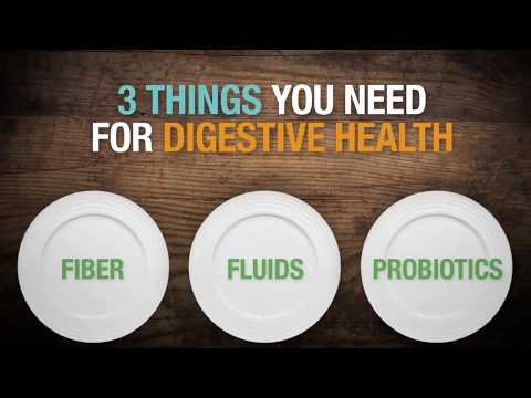 Components of Healthy Digestion