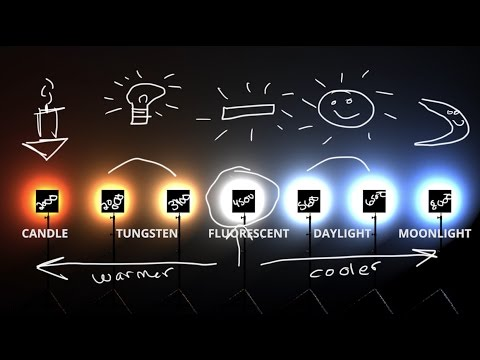 White Balance & Kelvin Color temp explained 💡