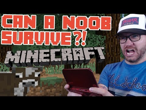 Can a Noob Survive 3 days? - Minecraft 3DS