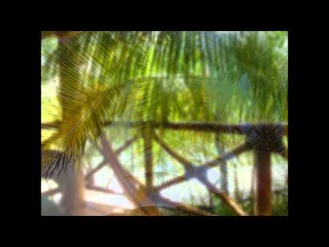 Mexico- Playa del carmen y Holbox 2