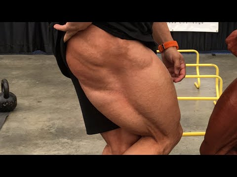 Bigger Hamstrings For Complete Leg Development | Regan Grimes