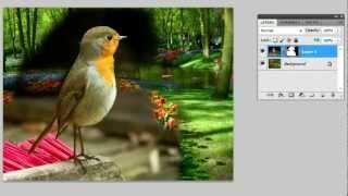Como emagrecer e engordar no photoshop cs3 steam cs go gift package