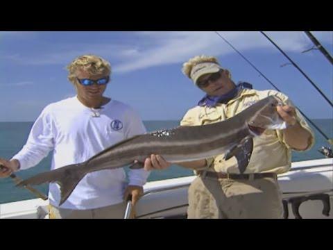 Deep Sea Fishing for Cobia in Marathon Florida Keys