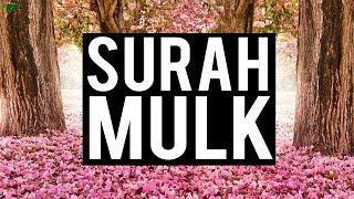 SURAH MULK (VERY SOOTHING)