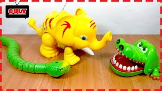 Chú voi con voi ma mút dễ thương làm bạn với cá với và rắn đồ chơi trẻ em baby elephant toy for kids