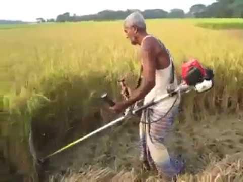 How to Crop Cutting on My Farm By Simple Crop Cutting machine, Farmer Helping Machine