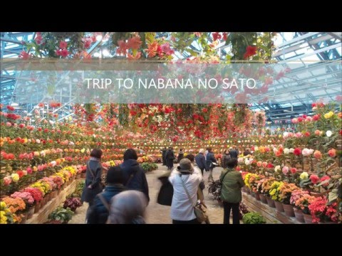 TRIP TO NABANA NO SATO