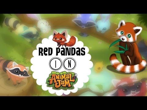 Red Pandas in Animal Jam