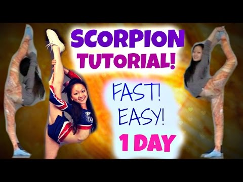 How to Learn a SCORPION - in ONE DAY!