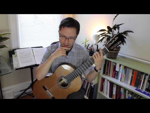 Lesson & PDF: The Swan for Classical Guitar (beginner)