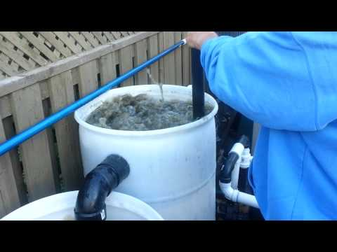 Video 3 7500 gallon pond filter cleaning