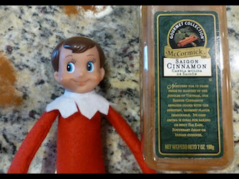 WHAT DO I DO IF MY ELF ON THE SHELF DOESN'T MOVE? JUST DO THIS!