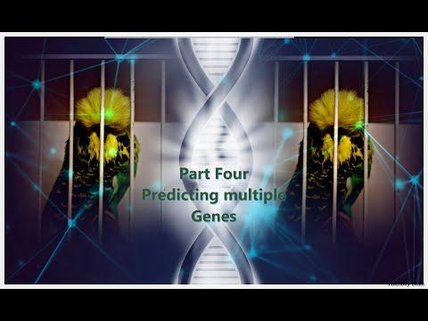 Beginner's guide to Genetics Part Four - Predicting multiple genes