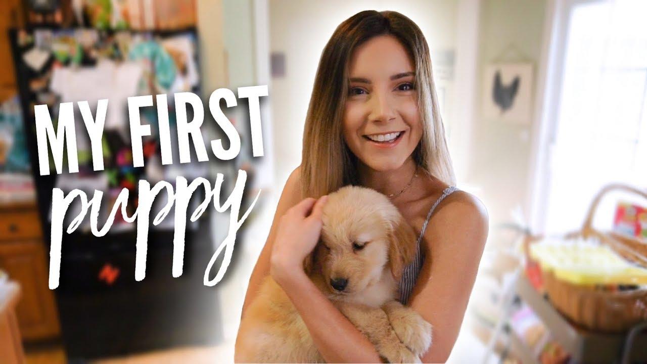 The Day I Got My Puppy