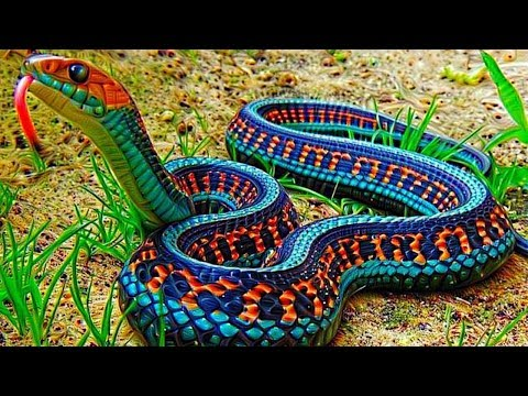 Xxx Mp4 10 Most Beautiful Snakes In The World 3gp Sex