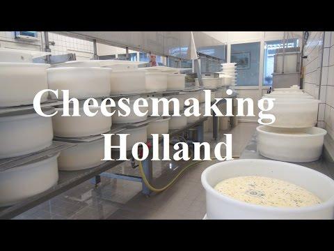 Netherlands/Holland/Chees Making/Jongenhoeve/Bergambacht Part 13