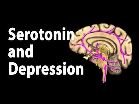 Serotonin and Treatments for Depression, Animation.