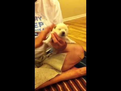 Burping the baby.