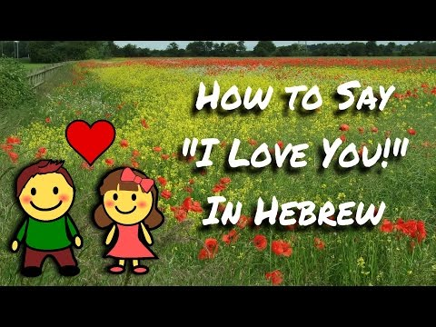 How to say I Love You in Hebrew | Language Lesson