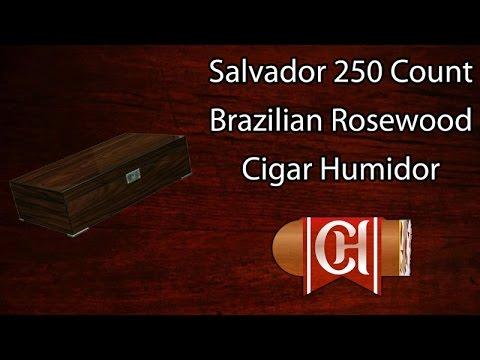 The Salvador 250 Count Brazilian Rosewood Cigar Humidor