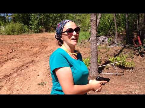 The Wife's First Pistol: What We Chose and Why.