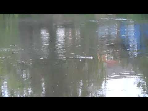 FREE FISHING LESSONS