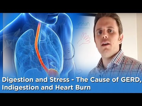 Digestion and Stress - The Cause of GERD, Indigestion and Heart Burn