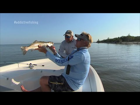 Speckled Trout Fishing with Mirrolure Surface Walker Top Dog