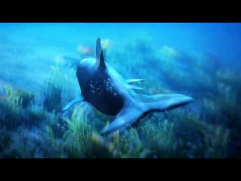 How to turn into to a sea Animal  on xbox one