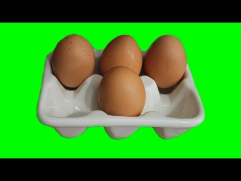 How to make Egg Trays at home