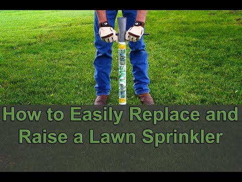 DIY Easily Raise or Replace a Lawn Sprinkler Head without Digging