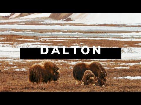 The DALTON HIGHWAY - Alaska Road Trip Travel Documentary