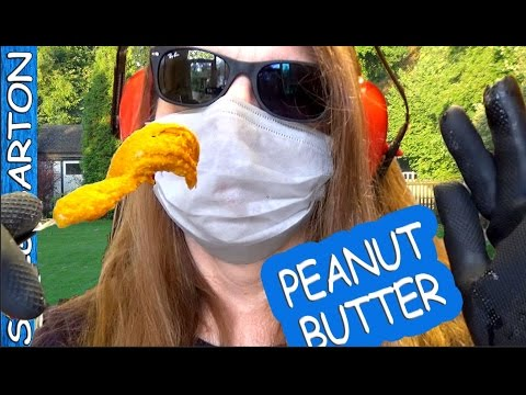 HOW TO MAKE PEANUT BUTTER - USE PEANUTS! Rubber Gloves! Face Mask! Ear Defenders!